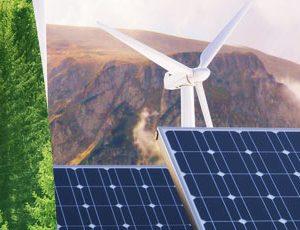 Expert en environnement et développement durable