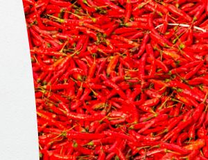 Master FESAPCA : parcours Arômes alimentaires