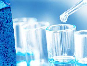 2ème année DUT Génie Biologique Option Génie de l'Environnement - IUT de Sénart Fontainebleau