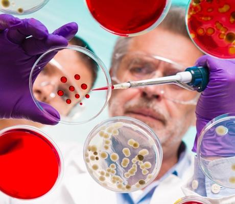 ALTERNANT(E) - TECHNICIEN (NE) PROCEDES PILOTES BIOTECHONOLOGIES