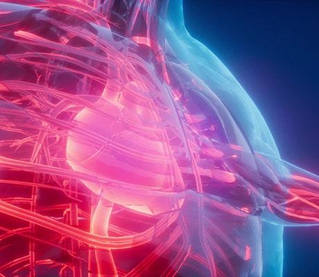 Apprenti Marketing Cardiovasculaire